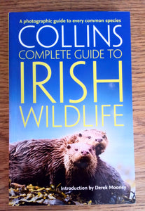 Complete Guide to Irish Wildlife