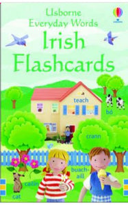 Irish Flashcards - Everyday words