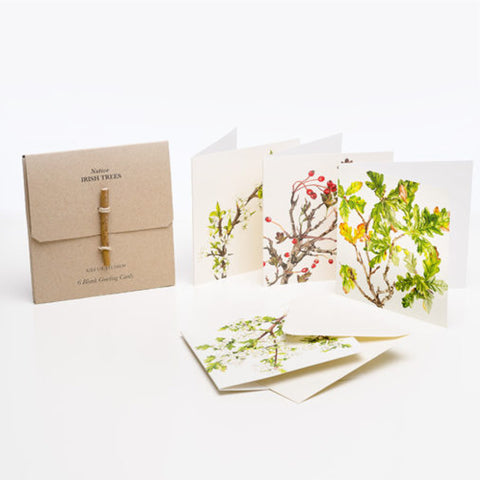 6 Pk Greeting Cards by Kilo Studios – Native Irish Trees - OUT OF STOCK