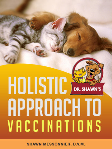 A Holistic Approach to Vaccinations - ebook
