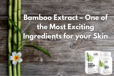 Bamboo Extract – One of The Most Exciting Ingredients for Your Skin