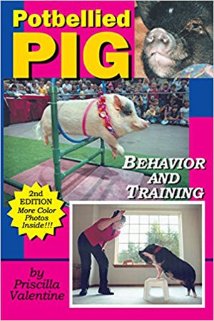 Potbellied Pig Behavior and Training by Priscilla Valentine