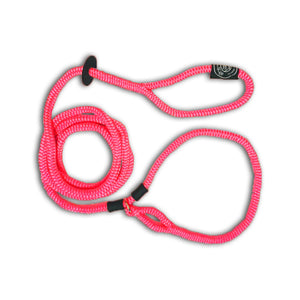 Harness Lead - Oink Marketplace for Pigs