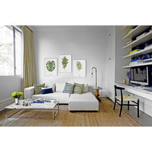 Green Nordic adornment picture sitting room hangs wall decor contracted plant small and pure and fresh dining-room murals G cool