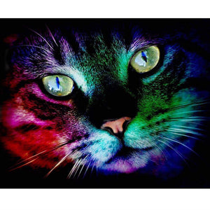 "New Full Square Diamond 5D DIY Diamond Painting ""Color Cat"" Embroidery Cross Stitch Rhinestone Mosaic Painting Decor Gift"