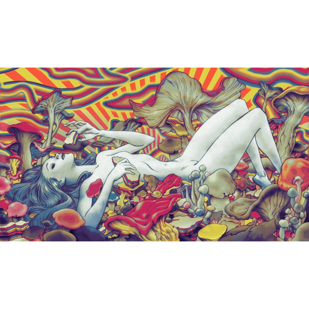 Psychedelic Trippy Art Fabric poster 43 x 24