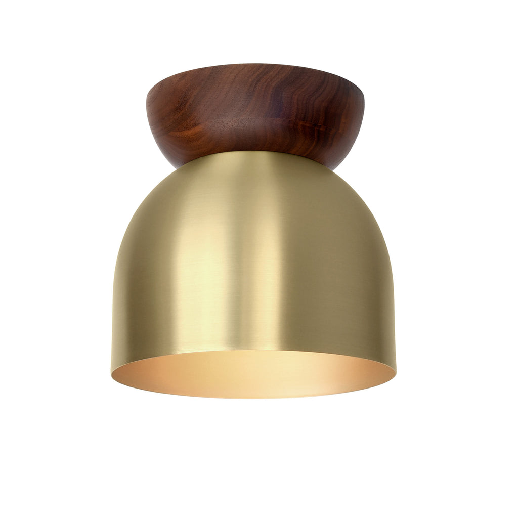 "Amelie Surface 6"". Brass finish with Walnut wood canopy shown. (G19 light bulb shown, not included). Cedar and Moss."