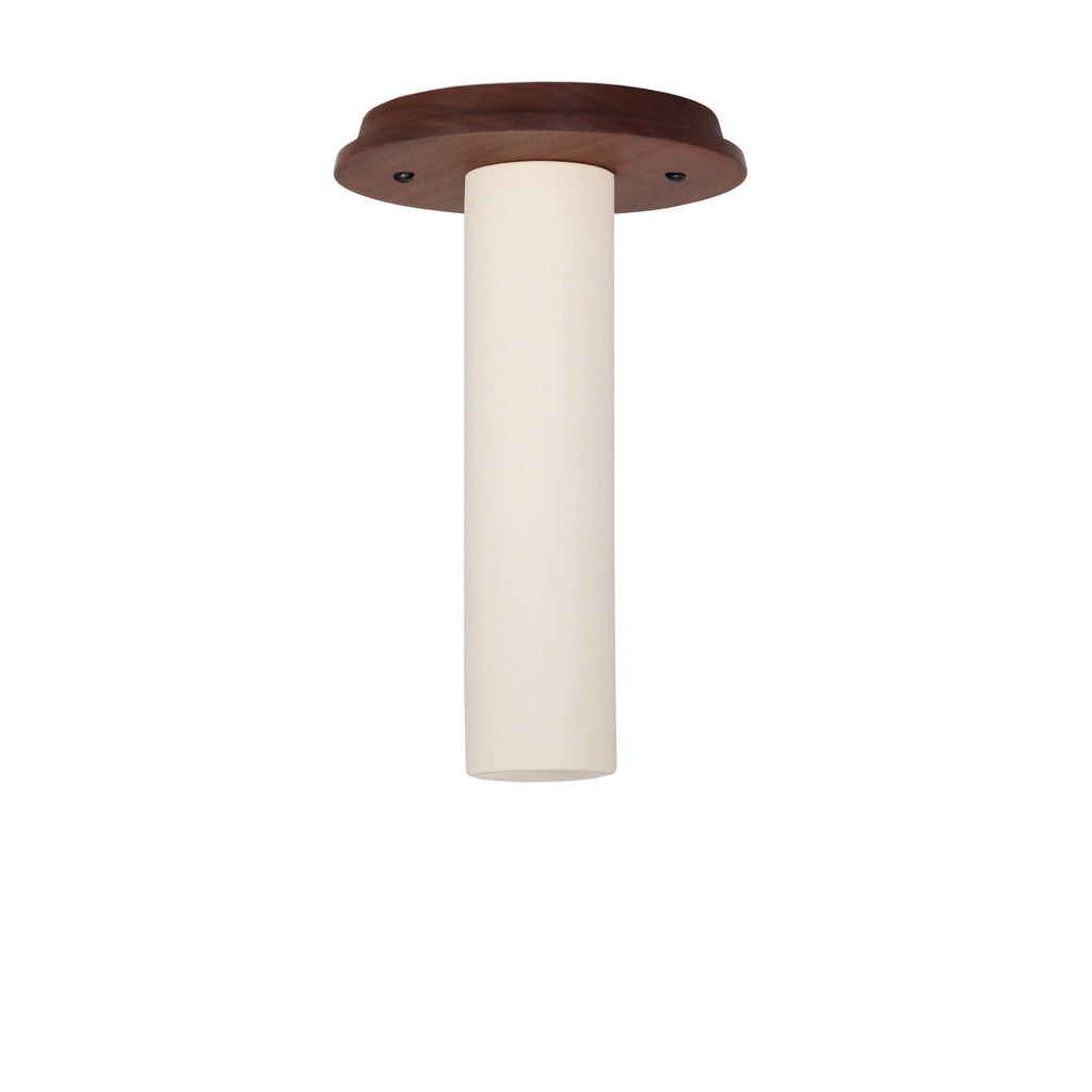 Cedar and Moss. Fiona Surface light. Shown with Walnut canopy and Bone long socket cup. (Shown with Recessed LED light bulb option).