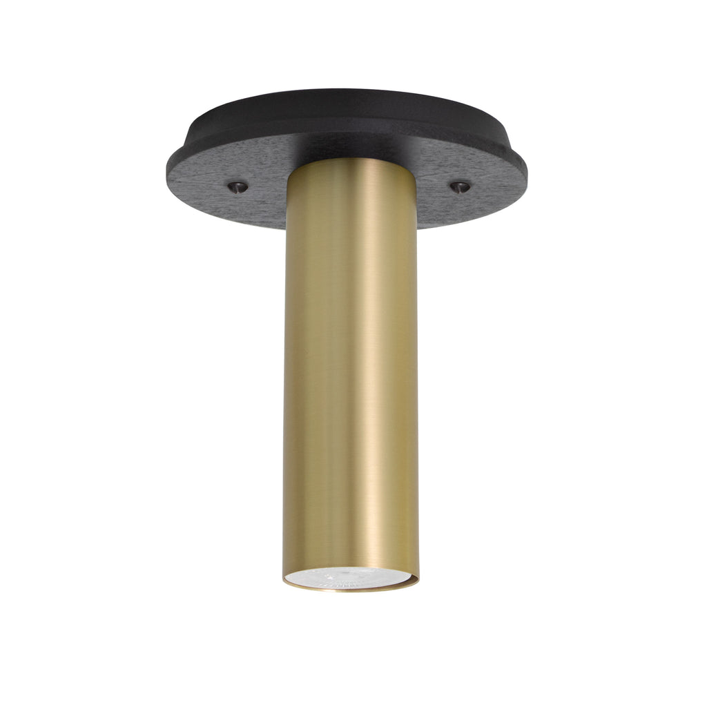 Fjord Surface. Shown in Brass Finish with Black Stained Wood Canopy. Recessed + LED bulb option (bulb included). Cedar and Moss.