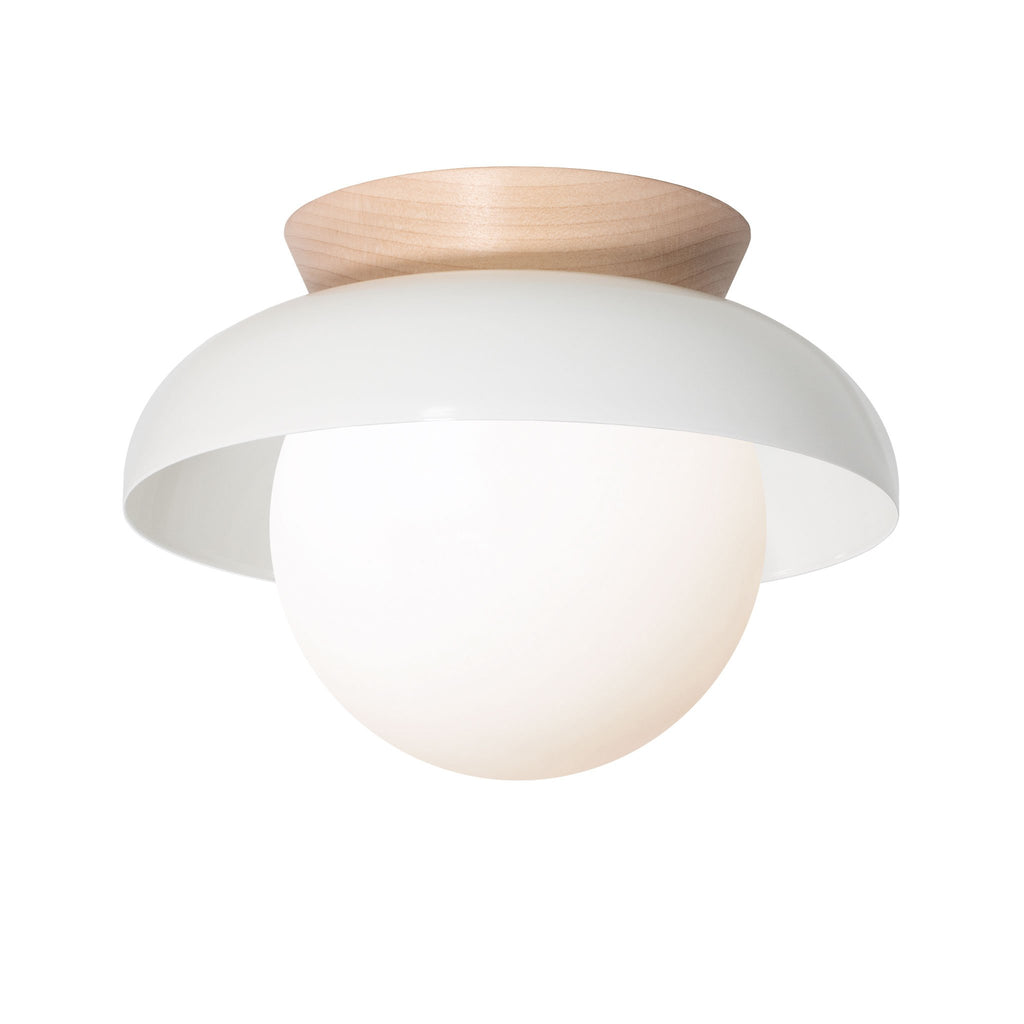 Lexi Surface or Sconce. Shown in White finish with Maple wood canopy and Opal glass. Cedar and Moss.