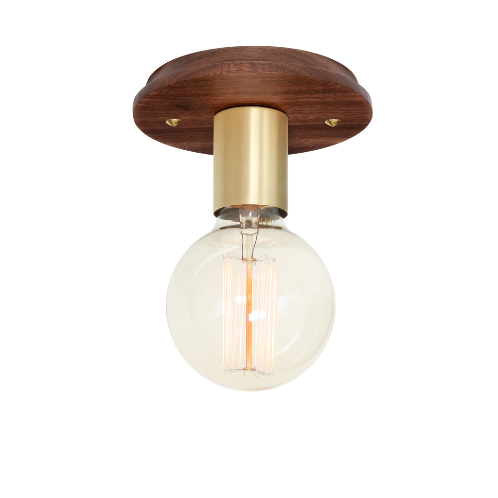 Swift Surface or Sconce. Shown with Brass metal socket cup and Walnut wood canopy. (G30 light bulb shown, not included). Cedar and Moss.