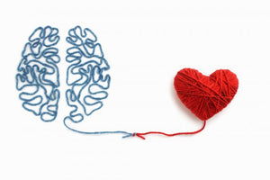 How Your Heart May Be Your Wisest Brain