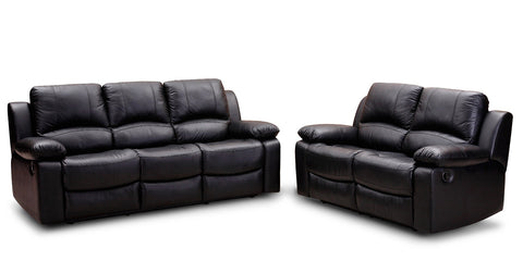 2 Piece Leather Couch Set