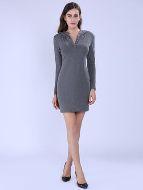 Plain V-Neck Casual Long Sleeve Women's Sheath Dress
