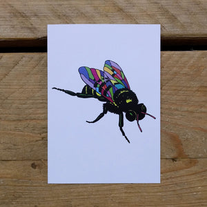 Super-fly folded note card