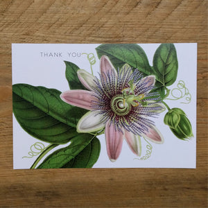 Flat Pink Clematis thank you card