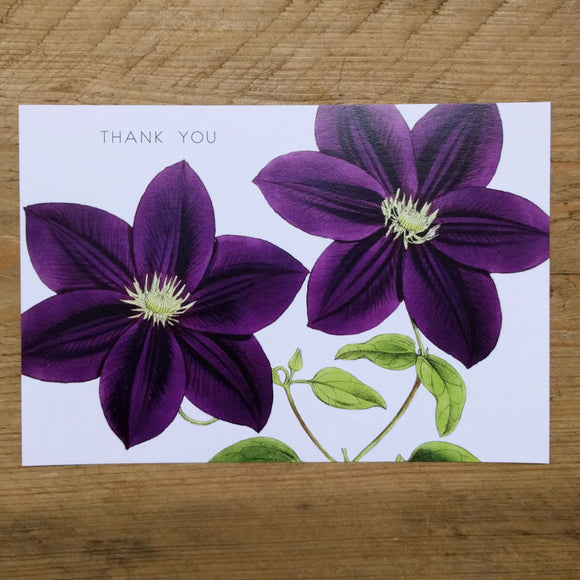 Flat Purple Clematis thank you card