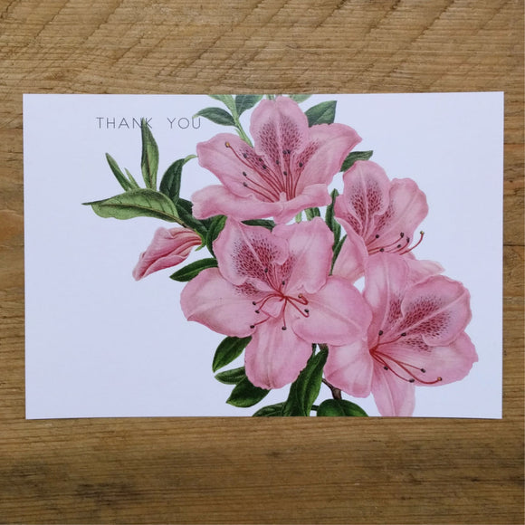 Flat Pink Lily thank you card