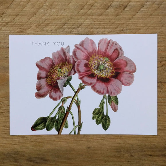 Flat Mullein thank you card
