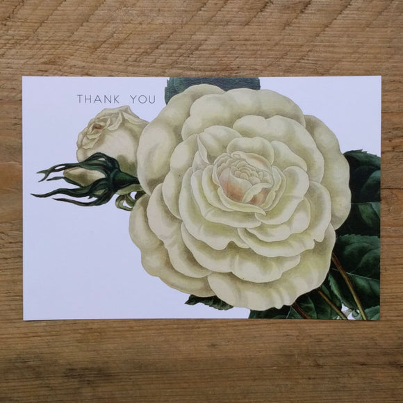 Flat White Rose thank you card