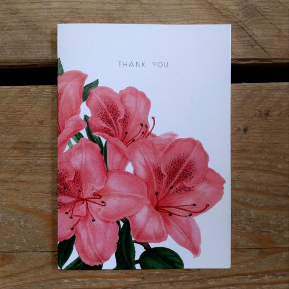 Pink Lily folded thank you