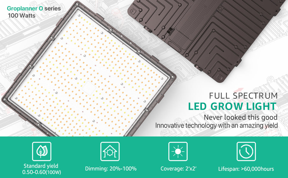 Which are the best LED grow lights?