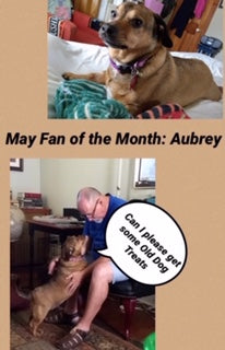 May: Fan of the month
