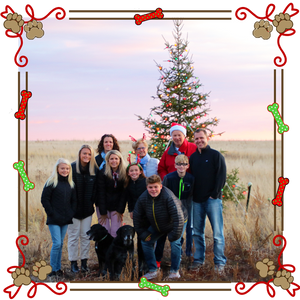 A 2019 holiday wish to our Old Dog family