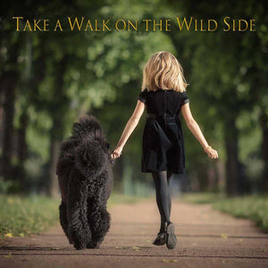 Greeting Card - Take a walk on the wild side
