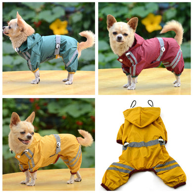 Chihuahua Dog Raincoat
