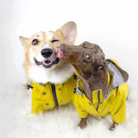 Coco Dog Raincoat