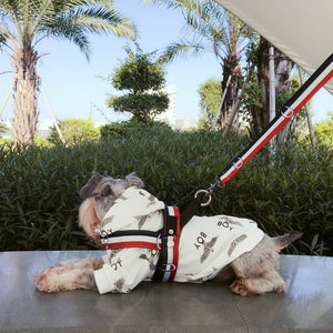 Sport Dog Collar, Harness And Leash