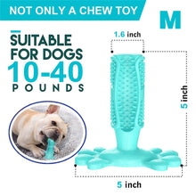 Chewy dog toothbrush toy