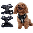 Pawstars Harness