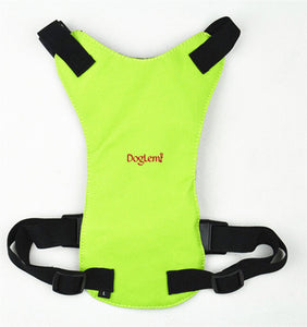 Dog Safety Harness
