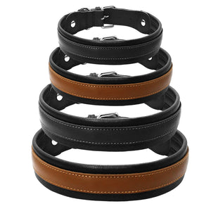 Leather Big Dogs Collar