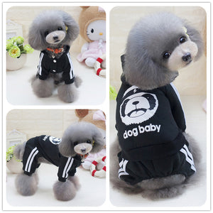 Pebble Dog Suit