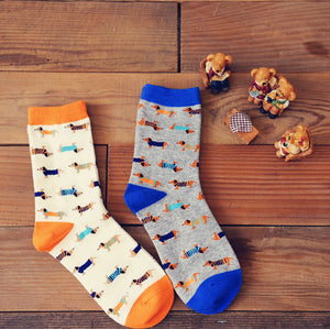 Rainbow Dachsund Socks