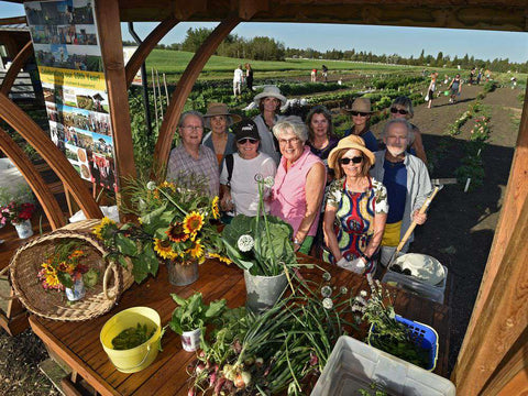 Community Gathering at the Green and Gold Community Gardens