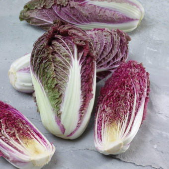 Scarvita Cabbage Seeds