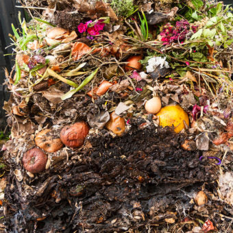 Compost and Composting