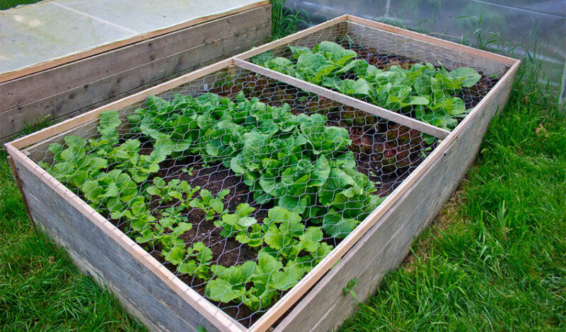 Raised Bed Protector