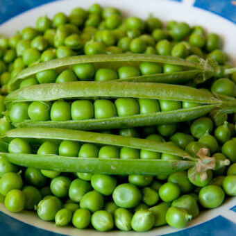 Shelling Peas Seeds