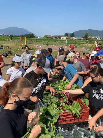Secondary Students Gathering Food to Take Home at SSSF Chilliwack