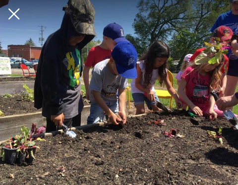 Access County Community Support Services young people planting seeds.
