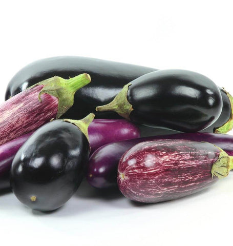How to grow eggplants Eggplant Blend
