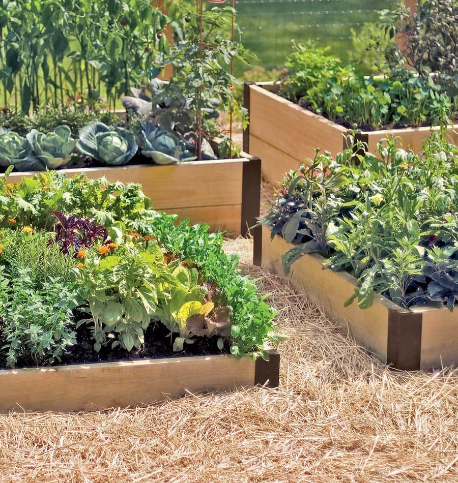 Quiet Corner Container Gardening Ideas: Raised Bed Corners