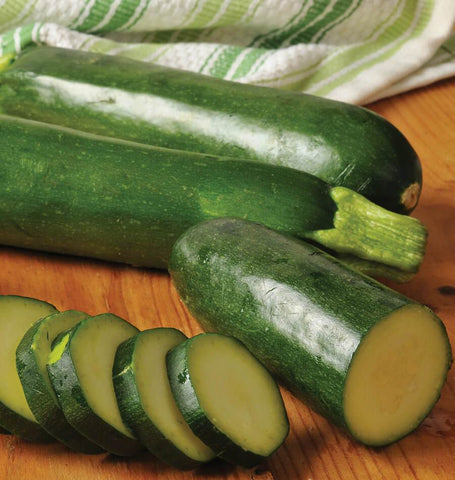 Jackpot Zucchini Squash Seeds How to grow zucchini