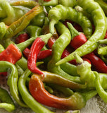 How to grow peppers Pepperoncini