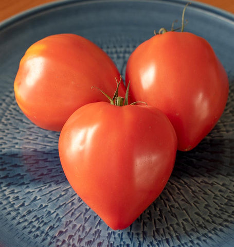Red Oxheart Tomato Seeds